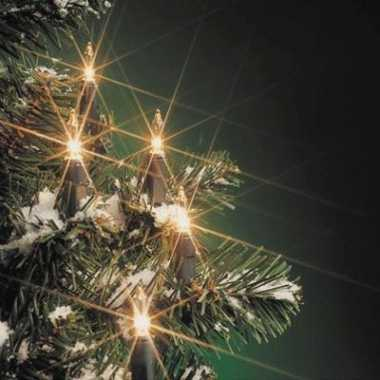 Kerstboom verlichting helder buiten 160