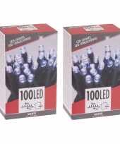 2x stuks kerstboom verlichting budget helder buiten 100 lampjes
